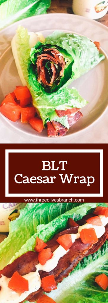 A low-carb spin on a classic sandwich. These BLT Caesar Wraps are easy to make and a perfect healthy snack or lunch.   Three Olives Branch