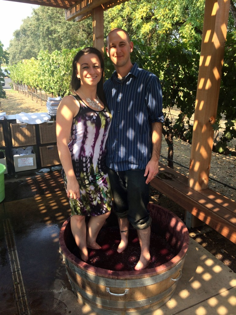 Grgich Grape Stomping - The Best Napa Valley Wineries| Thee Olives Branch