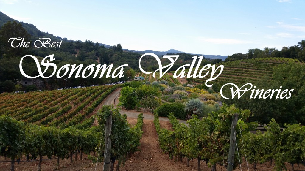 The Best Sonoma Valley Wineries | Three Olives Branch