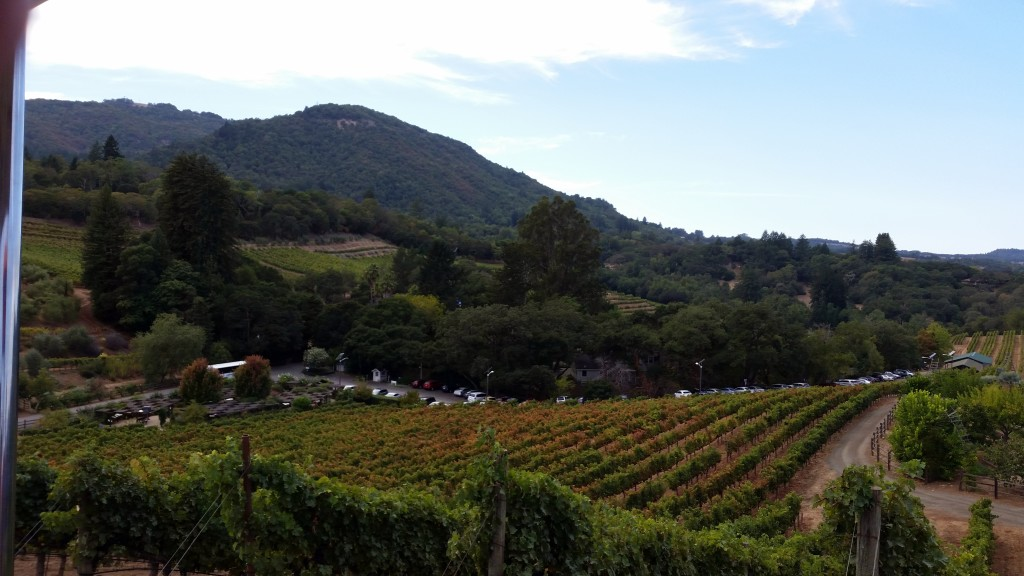 The Best Sonoma Valley Wineries - Benziger| Three Olives Branch