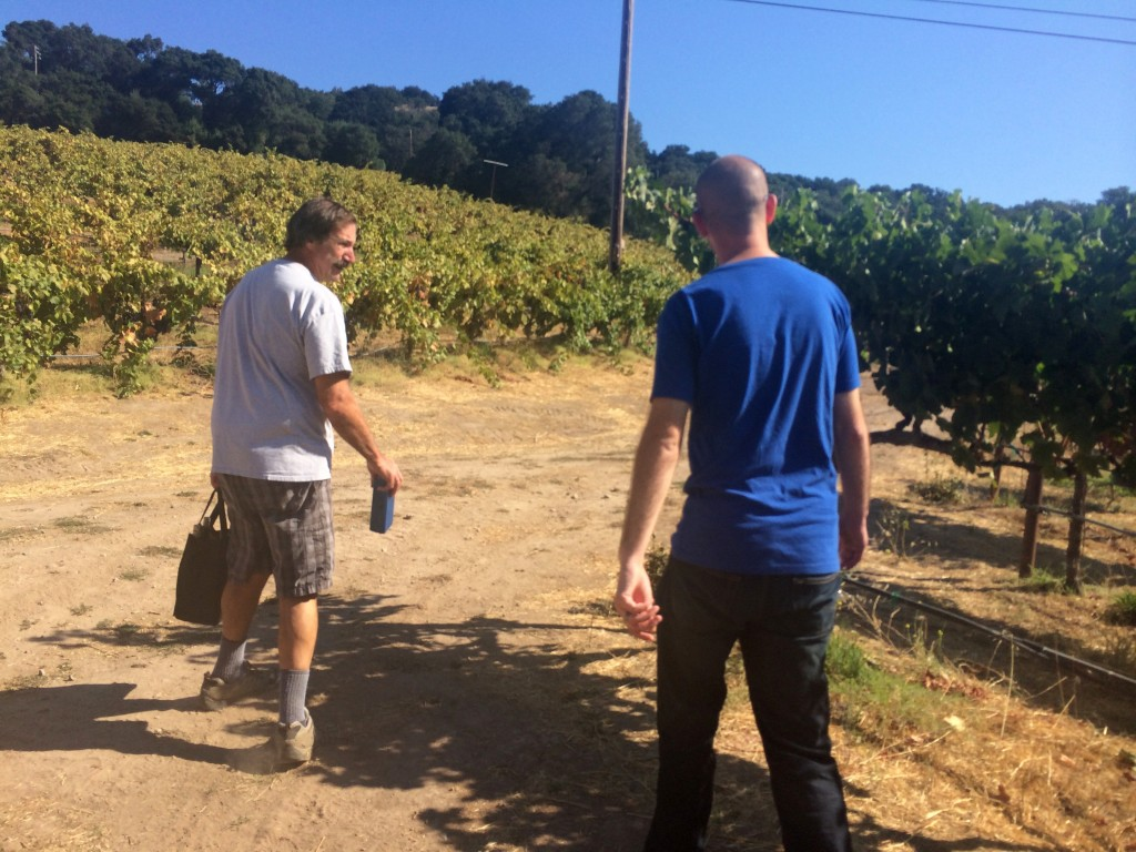 The Best Sonoma Valley Wineries - Ravenswood | Three Olives Branch