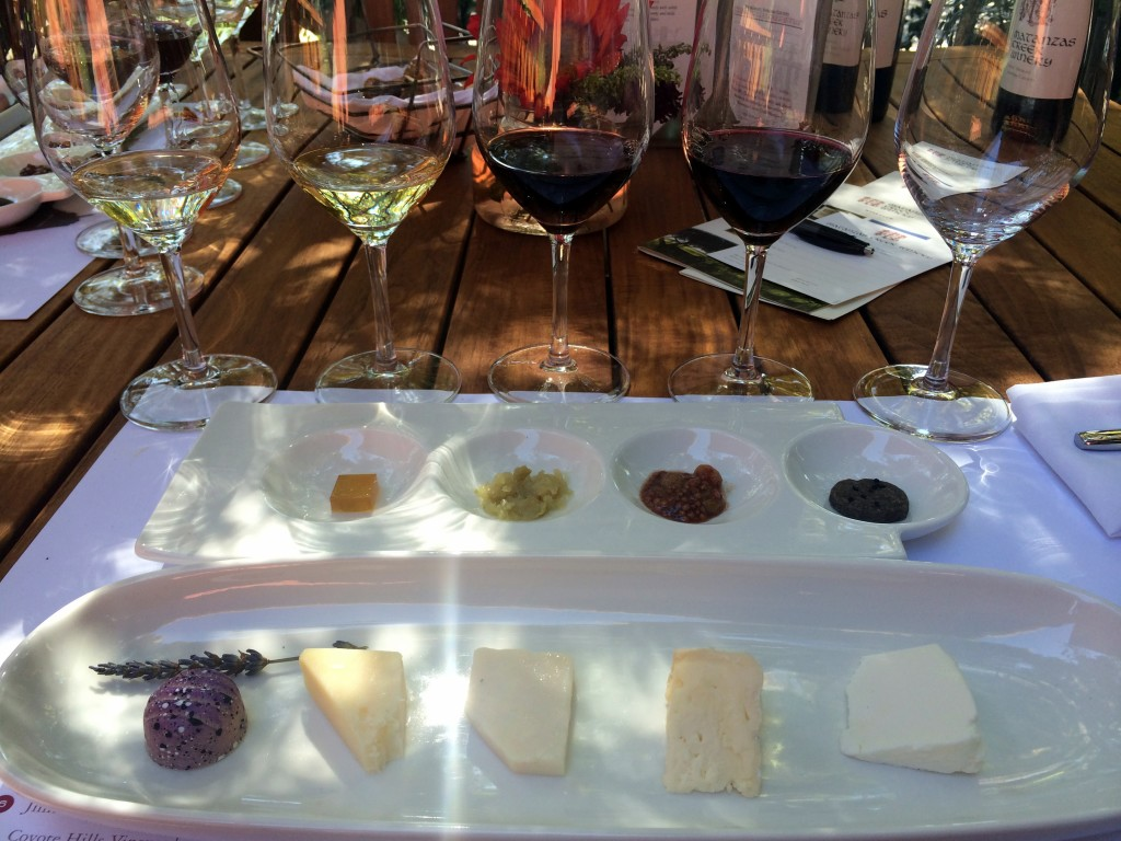 The Best Sonoma Valley Wineries - Matanzas Creek | Three Olives Branch