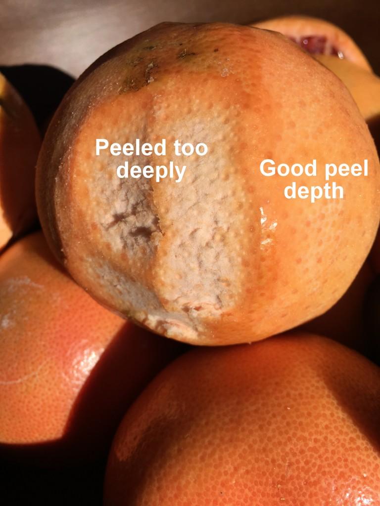 Grapefruit Limoncello (Grapefruit-cello) | Three Olives Branch