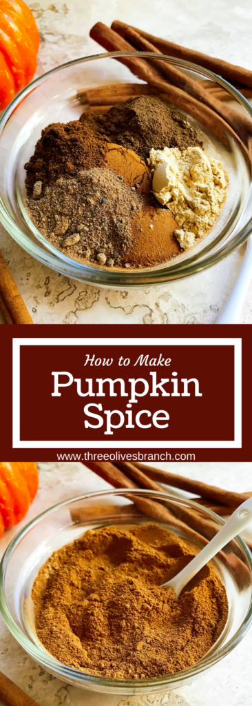 Learn how to make pumpkin spice blend! Less than 2 minutes will give you a blend that you can use in all of your Thanksgiving and fall baking, treats, and drinks. Cloves, cinnamon, allspice, ginger, and nutmeg provide the classic taste which you can easily customize to your liking. Vegan, gluten free, vegetarian recipe. How to Make Pumpkin Spice #pumpkinspice #fallbaking