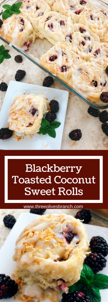 Sweet and tangy, these rolls are a special treat! Tart blackberries are paired with toasted coconut for a unique and delicious sweet roll! Perfect for breakfast or brunch and holiday mornings! Make them the day before for an easy morning. Vegetarian recipe. | Three Olives Branch | Blackberry Toasted Coconut Sweet Rolls | www.threeolivesbranch.com