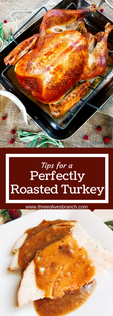 Some tips and tricks for roasting your Thanksgiving or holiday turkey! Include these tips as you can in your recipe of choice for a flavorful, juicy bird. Tips for a Perfectly Roasted Turkey | Three Olives Branch | www.threeolivesbranch.com