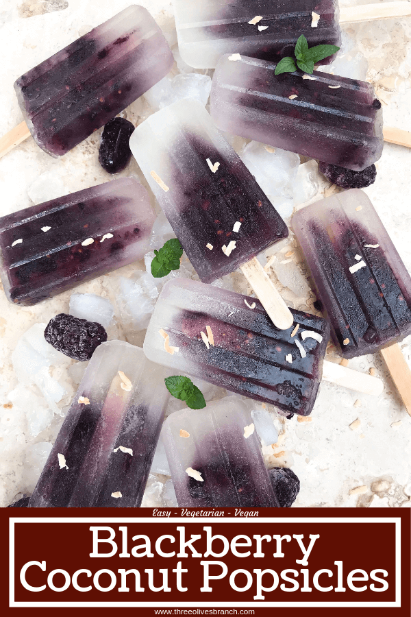 Quick and simple healthy popsicle recipe. Coconut water, blackberries and a little sugar (optional) for a fun and sweet kid friendly summer treat. Vegan, vegetarian, gluten free (GF) and can be paleo and Whole30 without the sugar. Blackberry Coconut Popsicles #popsicles