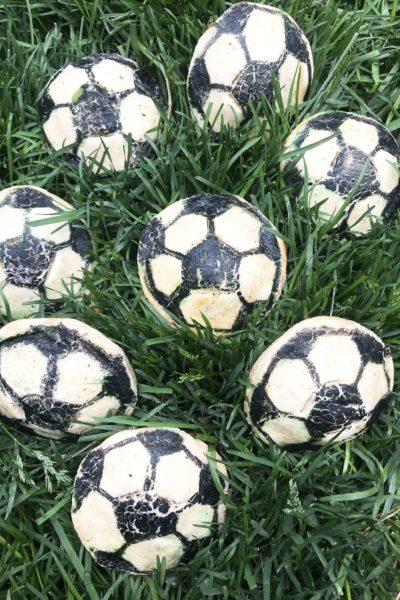 Soccer Ball Chicken Chile Relleno Empanadas