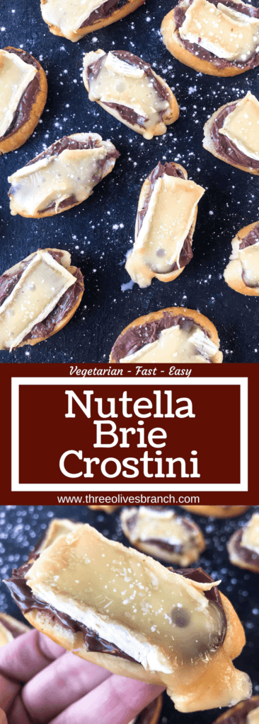 A quick and simple party appetizer recipe ready in less than 30 minutes. Brie cheese and chocolate hazelnut spread with salt on toasted bread slices. Nutella and Brie Crostini are vegetarian finger food with a sweet and salty, savory flavor.